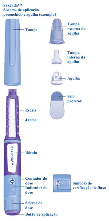 Ilustração para identificação das informações do Saxenda