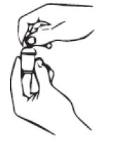 segure com firmeza a bisnaga e o aplicador encaixado e aperte a bisnaga suavemente até que o êmbolo chegue ao topo