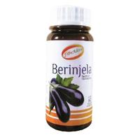 Berinjela - Fibralive