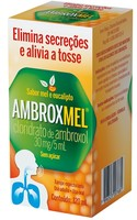 6mg/mL, caixa com 1 frasco com 120mL de xarope adulto, mel/eucalipto