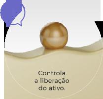 Passos 01